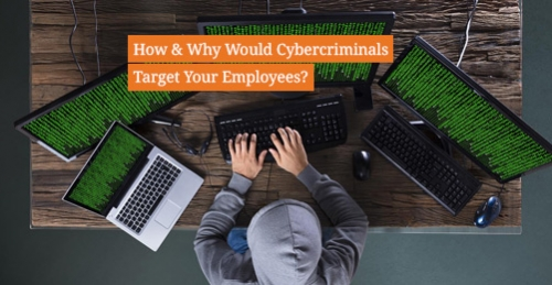 How_why_cybercriminals_target_people_human_assets_employees